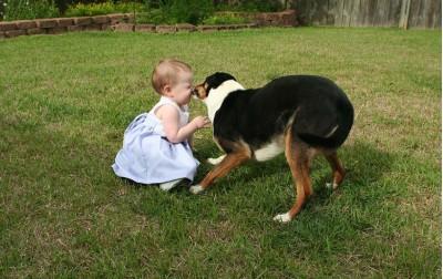 Συμπεριφερόμαστε με σεβασμό στα ζώα κα προλαμβάνουμε τυχών ατυχήματα