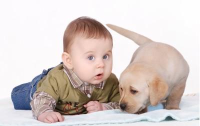 Η πρώτη συνάντηση νεογέννητου και σκύλου